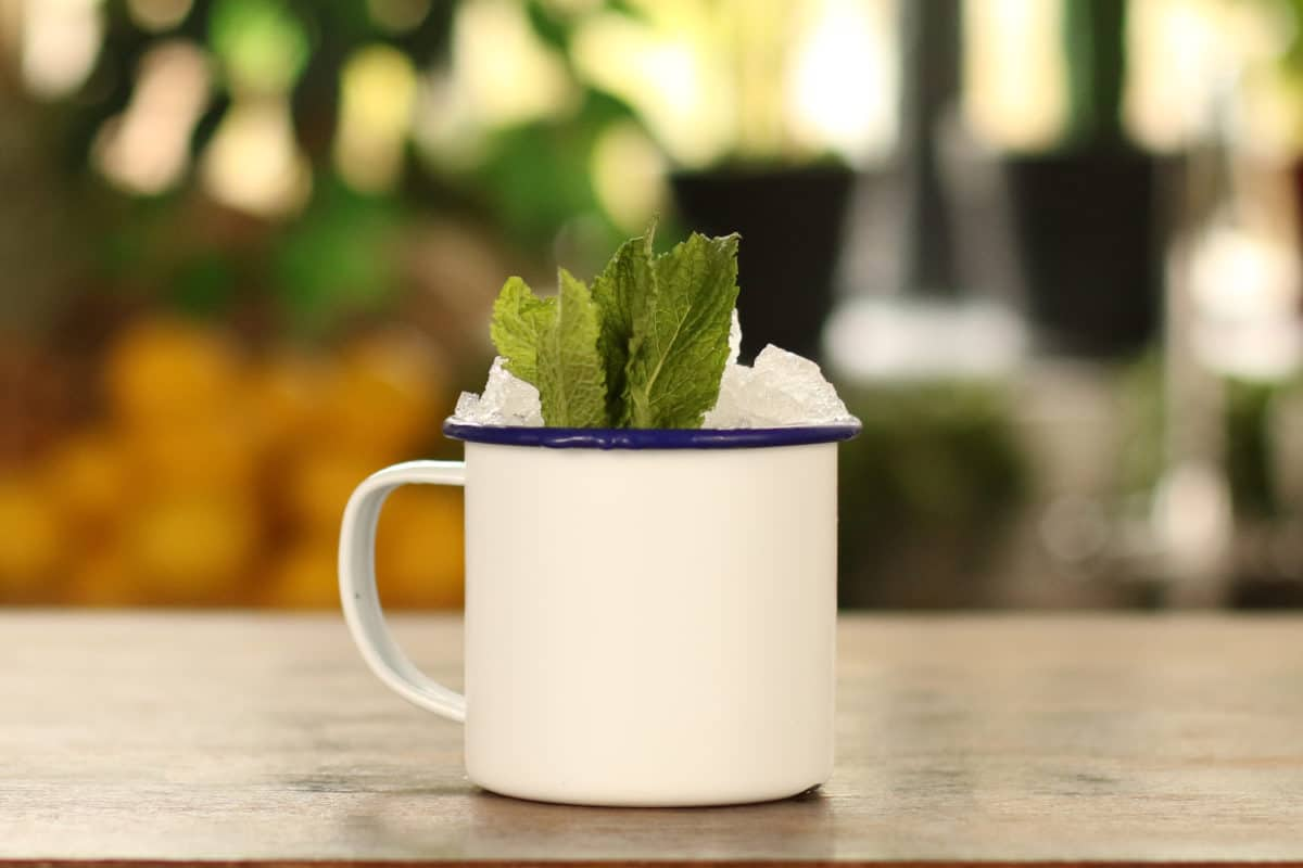 Mint-Julep-cocktail-recipe